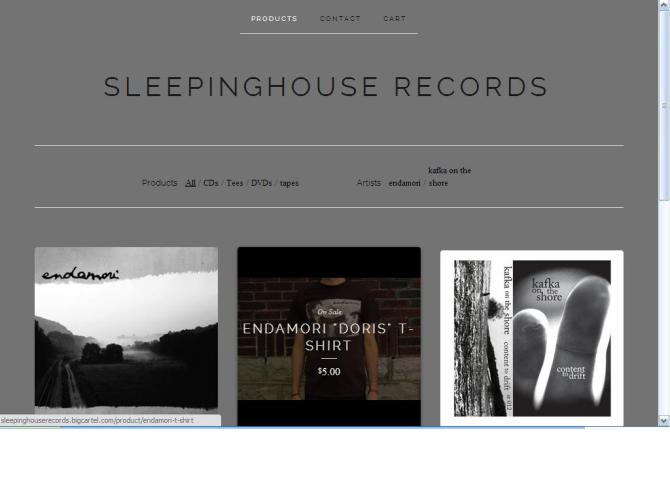 sleepinghouse-records-store23